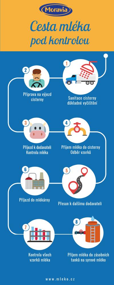 Cesta mléka do mlékárny infografika